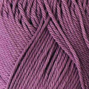 Catania F0240 Hyacinth von Schachenmayr