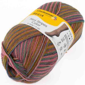 Regia Mini Stripes Color 02992 von Schachenmayr