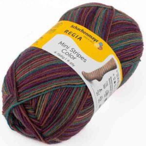 Regia Mini Stripes Color 02993 von Schachenmayr