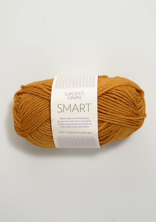 Smart col 2527 von Sandnes Garn