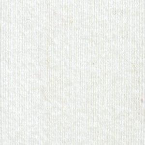 Regia PREMIUM Silk 00001 weiß von Schachenmayr